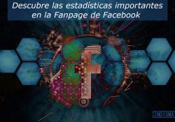 Descubre las estadísticas importantes en la Fanpage de Facebook